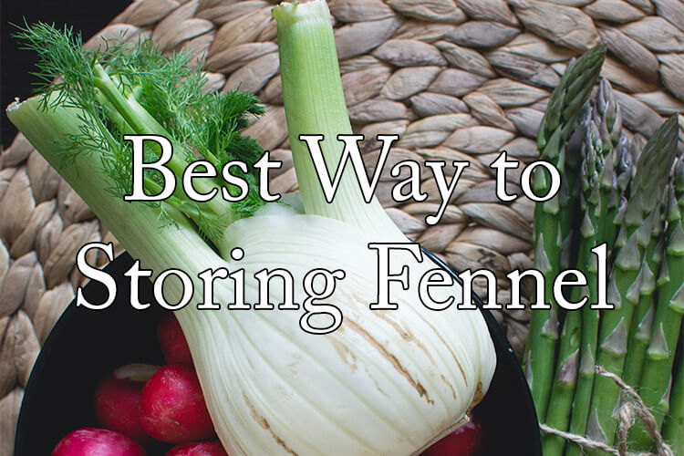 how-to-store-fennel