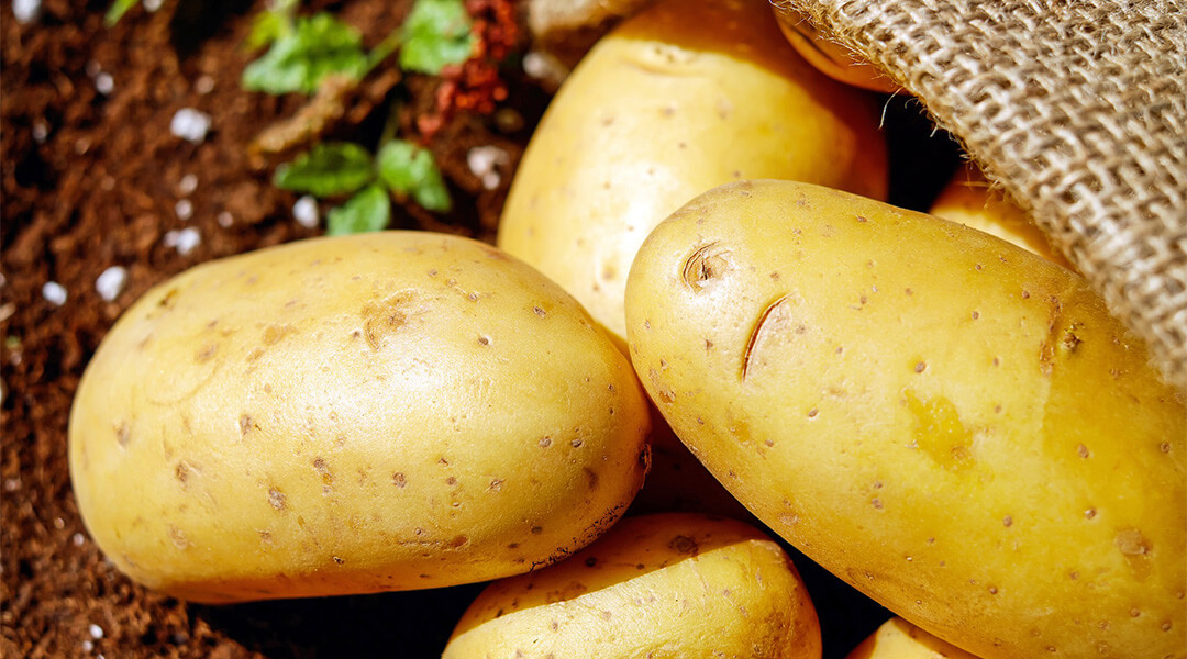 do-potatoes-go-bad-when-they-sprout