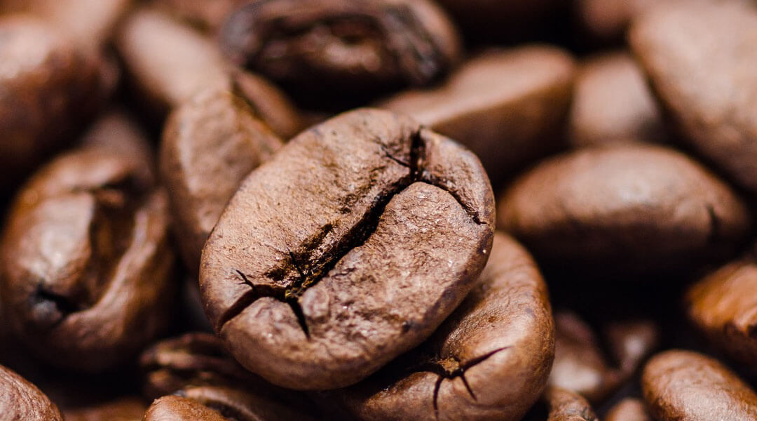 The 4 Best Grind And Brew Coffee Maker For Your Morning