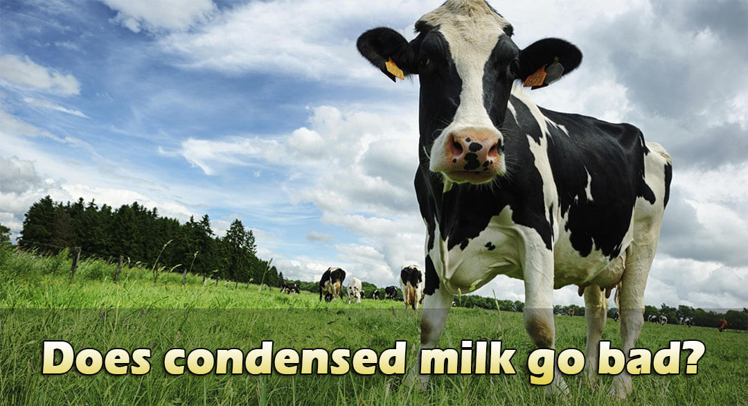 how-long-does-condensed-milk-last-after-opening