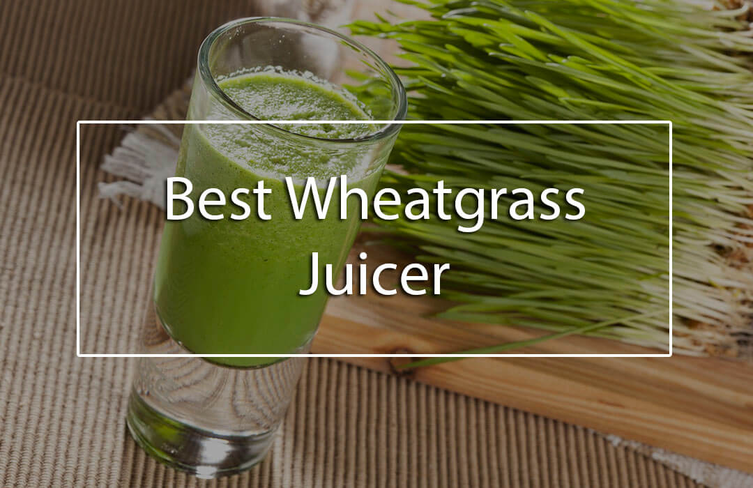 best-commercial-wheatgrass-juicer